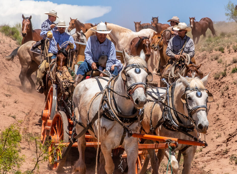 3fec96f8ebe Cavender's Ranch is a great place to relax and enjoy the western ...